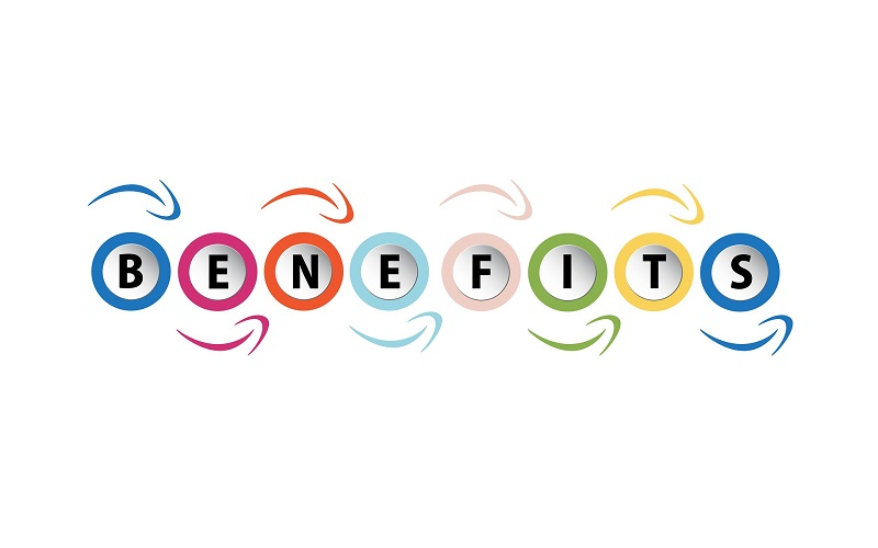 Top 10 Benefits of Being a Master Franchisee