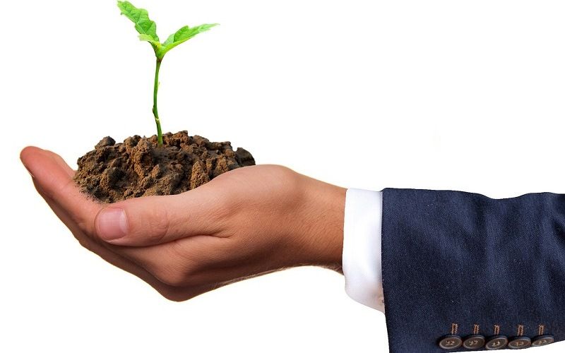 5 Advantages of Being an Eco Business Owner