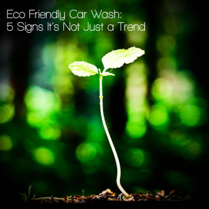 Eco Friendly Car Wash – 5 Signs It's Not Just a Trend