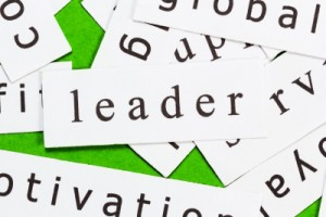 Effective Leadership The Key Behind the Success of Green Automotive Franchise Opportunities